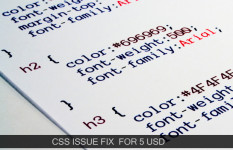 Get CSS or CSS3 issue fixed