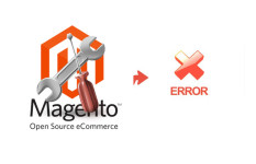 Fix magento eCommerce or customize