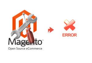 Fix magento eCommerce or customize