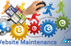 Website, Blog, Portal Maintenance