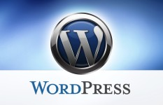 fix WordPress error, customize wordpress theme