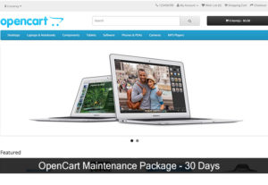 Opencart Website Maintenance Package