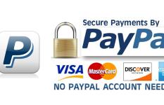Paypal Api Integration