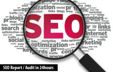 Fast SEO Report within 24 hours