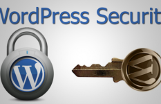 Secure WordPress Website's Security