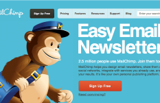 Integrate mailchimp with WordPress Website