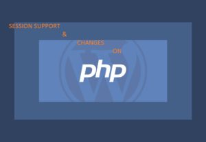 Provide 2 hours session support / changes / on PHP or wordpress websites