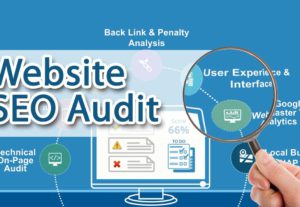I will do complete SEO audit of your website