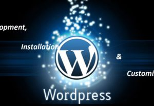 India WordPress installation