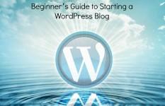 Setup wordpress blog website