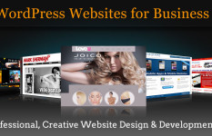 Professional WordPress Website + Premium Logo .