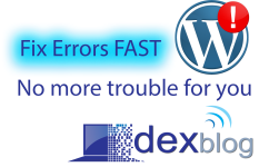 Website secure and Fix Issues on WordPress