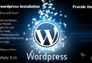 WordPress & theme installation on your website