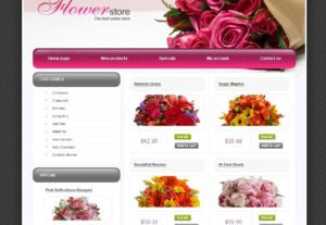 Build or Create Responsive eCommerce Website for Business