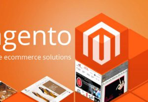 I will create eCommerce website Magento fully responsive
