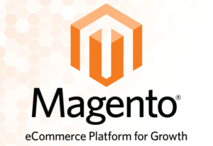 Fix error on Magento website
