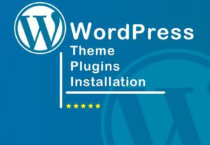 Install WordPress website, theme, plugins and Customize