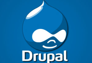 Fix Any Sort Of Drupal Issues