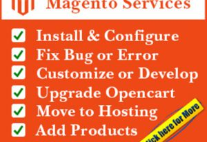 Fix Magento Bug And Customize Magento Store