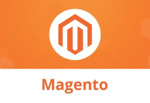 Install Magento 1 Or 2 Magento Themes Templates