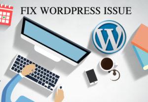 Fix WordPress Issues, WordPress Errors Problems