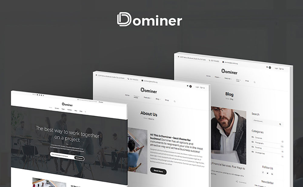 Dominer Business